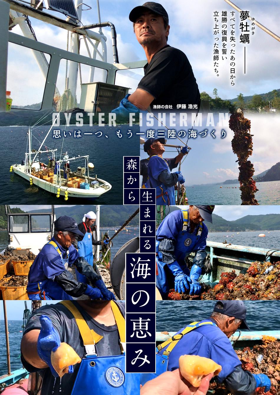海遊 三陸宮城県 石巻市 雄勝湾 かき牡蠣漁師