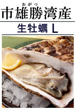 海遊 生牡蠣L