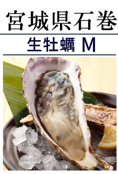 海遊 生牡蠣M