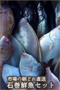 海遊 石巻港市場 鮮魚セット