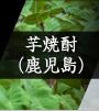 芋焼酎(鹿児島)