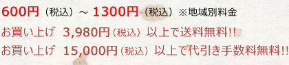 お買い上げ10,000円(税抜)以上で送料無料!!