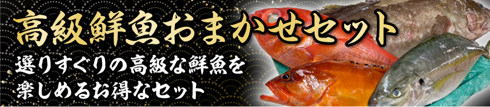 高級鮮魚おまかせセット