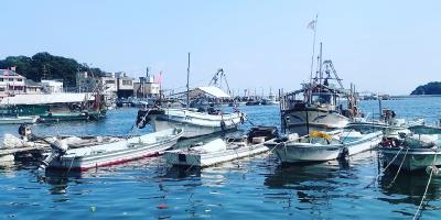 新鮮な魚が豊富な漁場