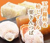 五百羅柿&柿しずく&源済岩