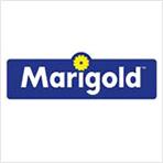marigold マリゴールド