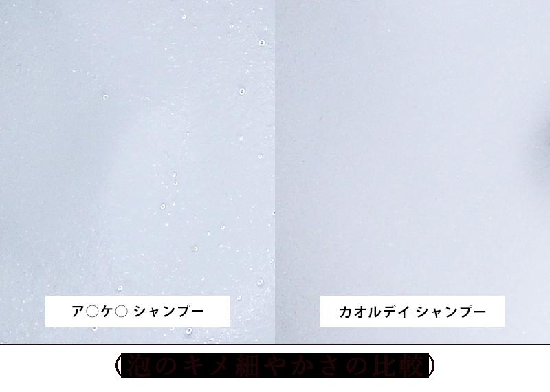 泡のキメ細やかさの比較