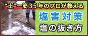 """""""土""""一筋35年のプロが教える塩害対策〜塩の抜き方〜"""