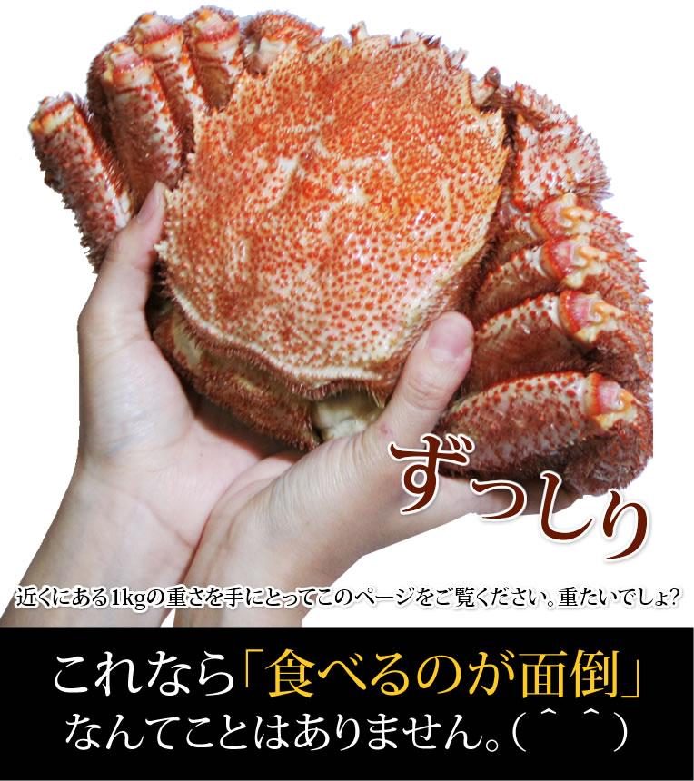 皆様、蟹の甲羅の重量はご存知ですか?小さくなればなるほど、甲羅重量の比率が重くなり、食べるところが少なくなるのです。