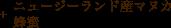 ニュージーランド産マヌカ蜂蜜