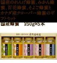 れんげ蜂蜜、みかん蜂蜜、百花蜂蜜、そよご蜂蜜とカナダ産クローバー蜂蜜のギフトセット