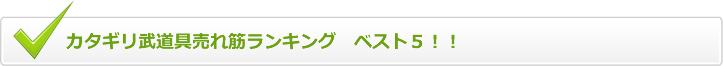カタギリ武道具売れ筋ランキング