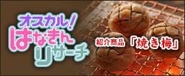 ■紹介商品■