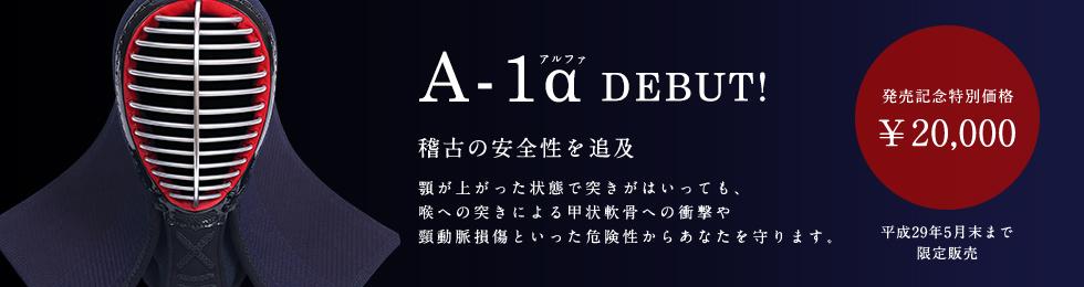 A−1α面
