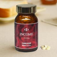 乳酸菌生産物質】インカム