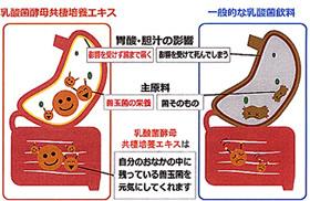 乳酸菌マイクロ熟成エキス【天彌DX】