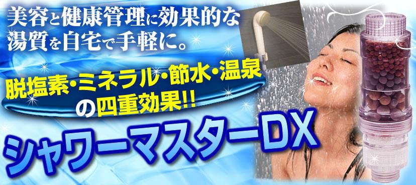 シャワーマスターDX