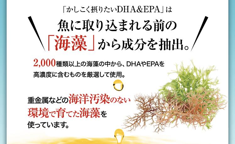 「かしこく摂りたいDHA&EPA」は魚に取り込まれる前の「海藻」から成分を抽出。