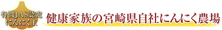 健康家族の宮崎県自社にんにく農場