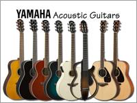 国内一番人気!ヤマハアコースティックギターのことならこちらで!!