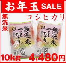 コシヒカリ無洗米
