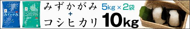 テツandトモのCMで話題の近江米 滋賀県のみずかがみとコシヒカリ なんでだろう