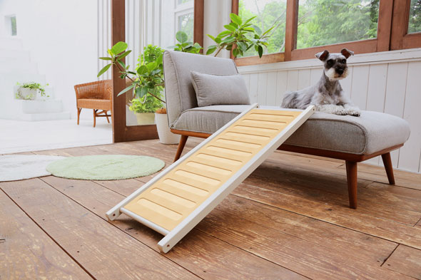 The Difference Such As A Porch Or Sofa Small Dog For Solid Wood Pet Ramps