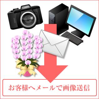 立札・のし紙・メッセージカード