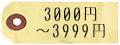 3000_3999