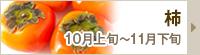 柿,紀州グルメ