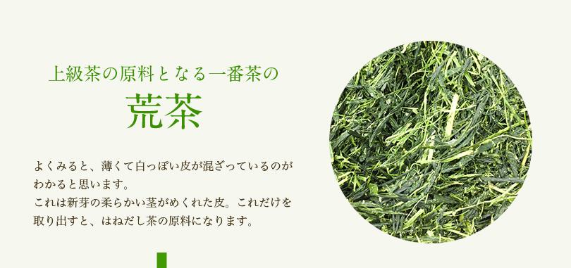 上級茶の原料となる一番茶の荒茶