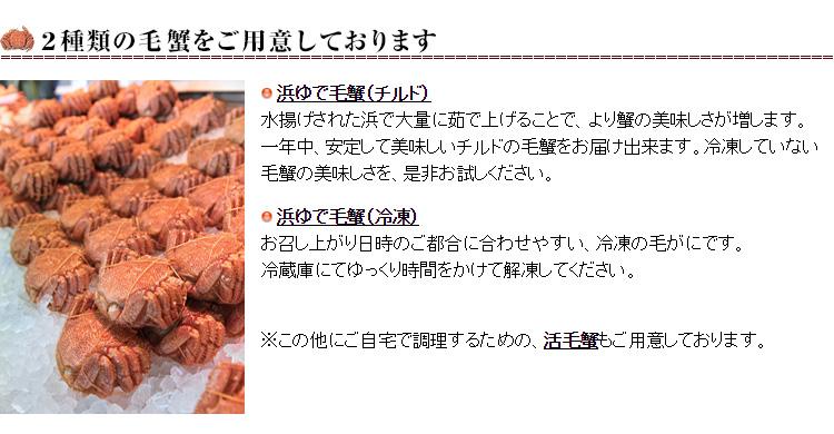 海明け毛蟹6