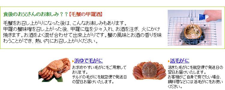 海明け毛蟹9