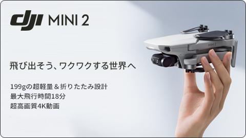DJImini2