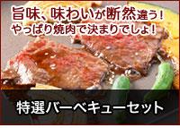 旨味、味わいが断然違う!やっぱり焼肉で決まりでしょ!特選バーベキューセット