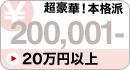 20万円 超豪華!本格派雛人形