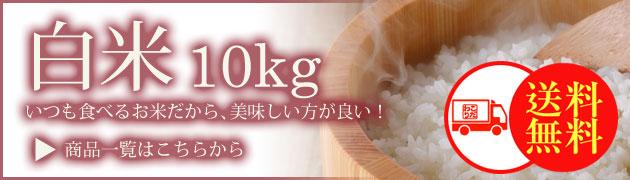 白米10kgカテゴリー
