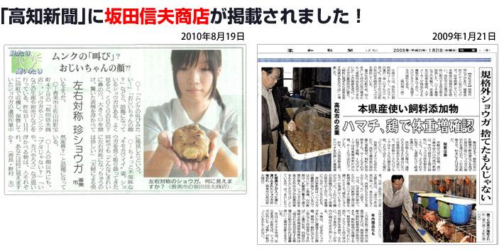 「高知新聞」に坂田信夫商店が掲載されました!