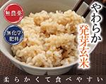 やわらか 発芽玄米