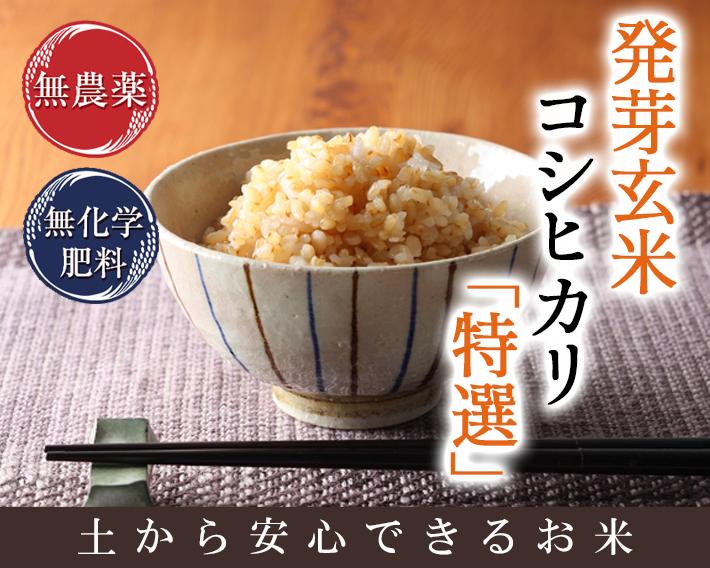 無農薬 発芽玄米 コシヒカリ 特選