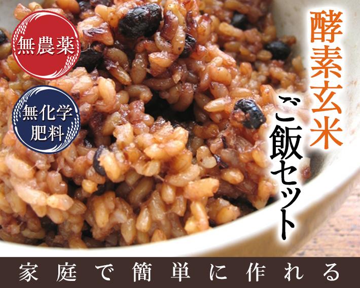 酵素玄米 ご飯セット