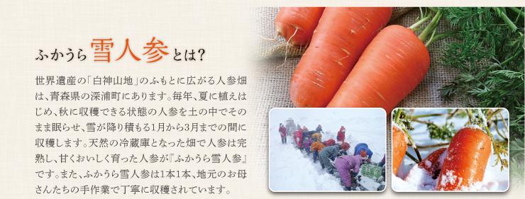 雪にんじんポタージュ3食セット