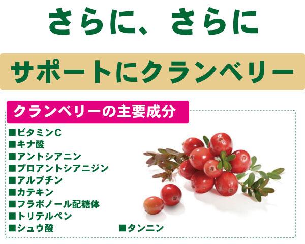 ペポカボチャ種子エキス+クランベリー:ペポカボチャ種子エキス&クランベリー:ペポカボチャ:西洋カボチャ:ソーメンカボチャ:クランベリー:ブルーベリー:のこぎりやし:ノコギリヤシ:香林製薬:コウリンラボ:KORIN:LABO:サプリ:サプリメント:supplement:健康食品:健食