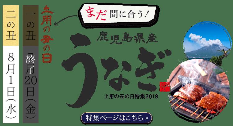 土用の丑の日特集2018鹿児島県産うなぎ