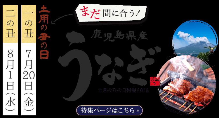 土用の丑の日まだ間に合う特集2018鹿児島県産うなぎ