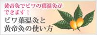 ビワ葉温灸器と黄帝灸の使い方