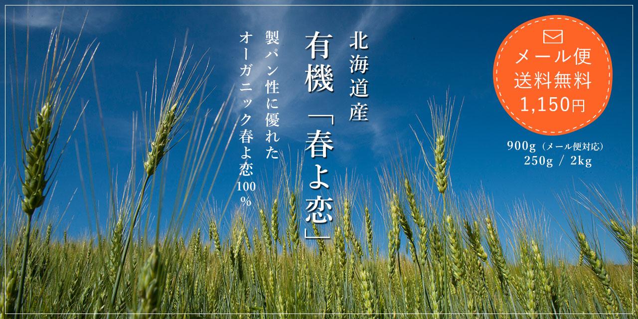 【メール便送料無料1,150円】有機 小麦粉 春よ恋 900g