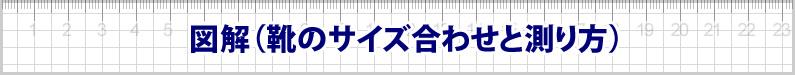 図解(靴のサイズ合わせと測り方)