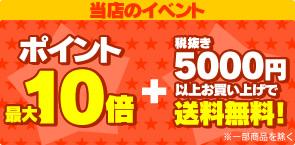 ポイントMAX10+5000円送料無料