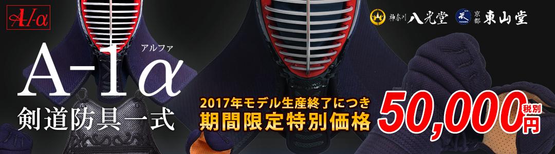 期間限定価格6mm刺剣道防具A-1α